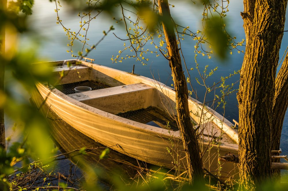 bark-boat-dawn-1039080.jpg